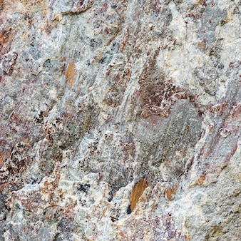 A close up or macro of a rock face