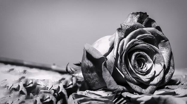 マクロ撮影をクローズアップ。赤いバラの花。フラワーショップのバラ。ブライトローズ