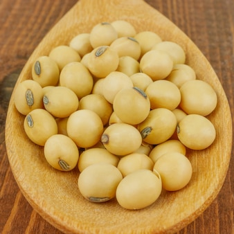 Close up macro soy beans in  wooden spoon