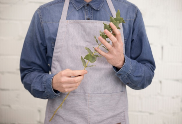 Close-up of a male florist in apron holding branch of eucalyptus populus leaves