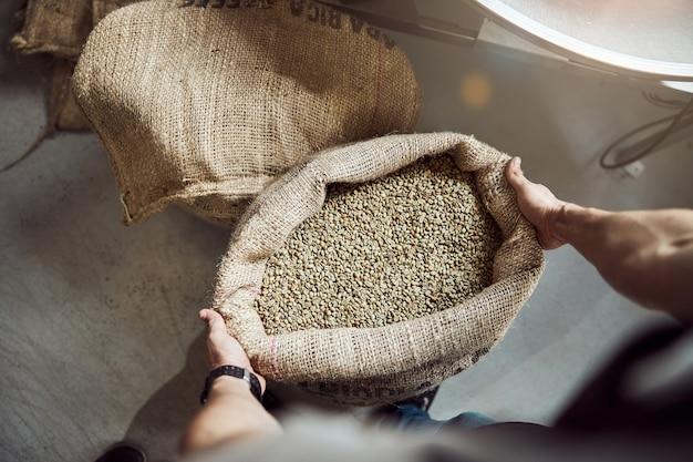 Close up of male worker holding open bag with unroasted arabica coffee beans