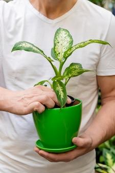 Крупным планом мужчина держит горшок с растением