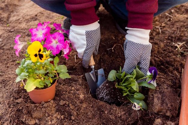 土に花を植えるクローズアップ男