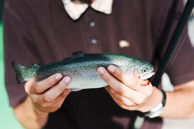 Close-up of man's hand holding caught fish