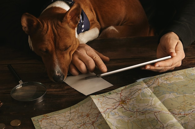 Close up of man's hands holding tablet and slide with finger, planning adventure route on aged wooden table while curious basenji dog looks on it with paws on tabletop