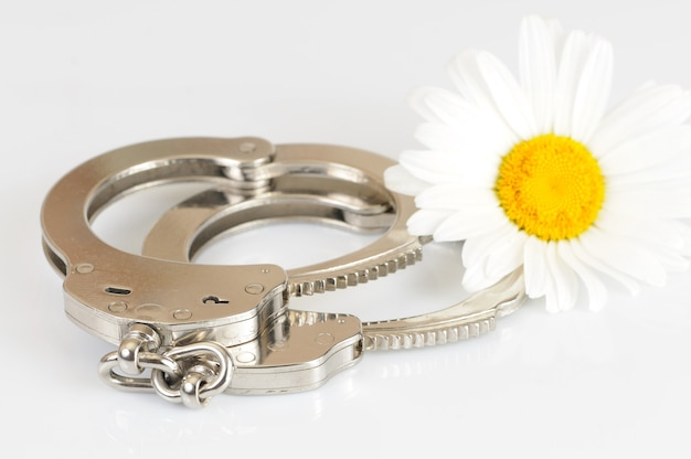 Close-up of metal handcuffs, keys and chamomile flower isolated over white background. sexual games and practicing bdsm concept
