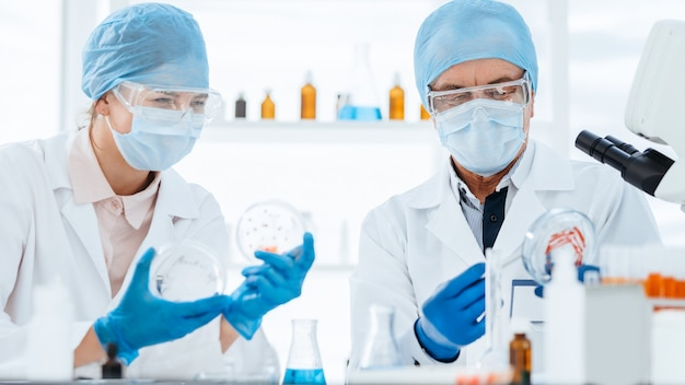 확대. 새로운 유형의 박테리아를 연구하는 미생물학 과학자. 과학과 건강.