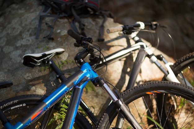 Close-up of mountain bike in forest