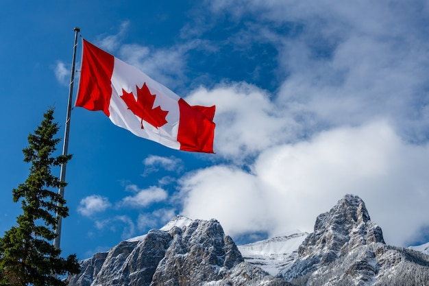 Close up of national flag of canada with natural mountains and trees scenery in the background.