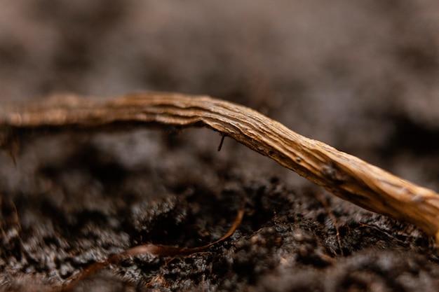 Закройте естественную почву