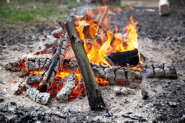 ピクニックで森の中で燃えている焚き火のクローズアップ。