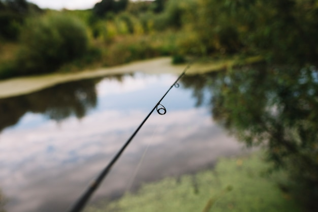 호수 근처 낚 싯 대 반지의 클로즈업