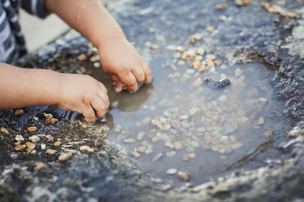 水たまりの小さな岩で屋外で遊んでいる小さな男の子の手のクローズアップ