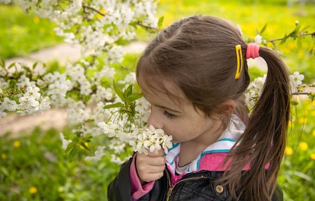 Крупным планом маленькая девочка нюхает цветущую ветку дерева.