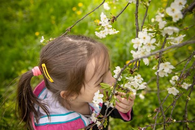 꽃이 만발한 나뭇 가지를 스니핑하는 어린 소녀의 클로즈업.