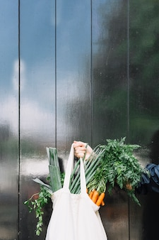 Close-up of a person holding bag of leafy vegetables against black wooden wall