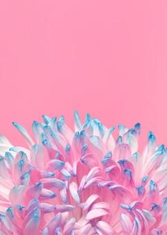 きれいに咲いた花のクローズアップ