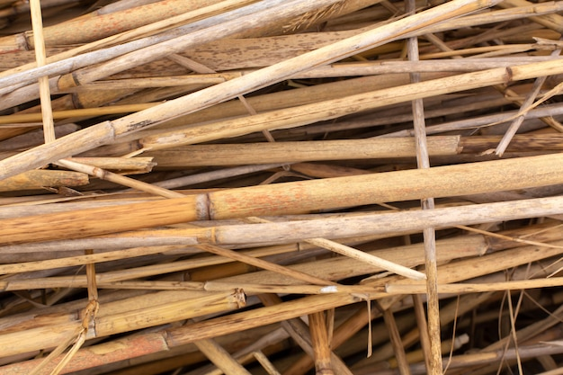 乾燥したtalkの茎のスタックのクローズアップ