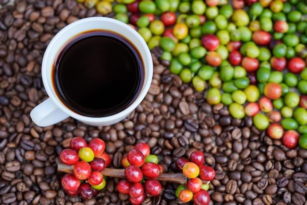 Крупный план белой кофейной чашки с фоном сырых кофейных зерен в утреннем солнечном свете.