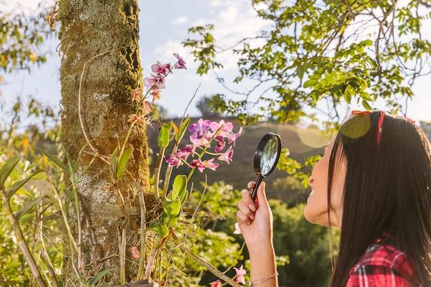돋보기를 통해 핑크 꽃을보고 여자의 근접 촬영
