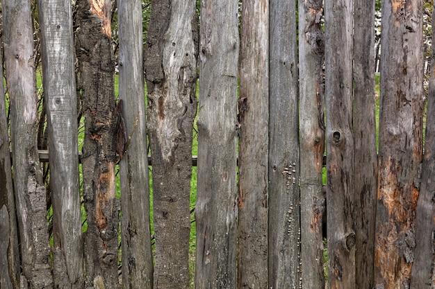 여름 날의 마을에 버드와 함께 오래 된 나무 울타리의 근접