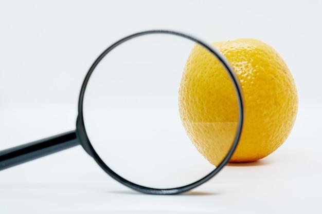 돋보기 아래 오렌지의 클로즈업입니다. 안티 셀룰 라이트 창의적인 개념.