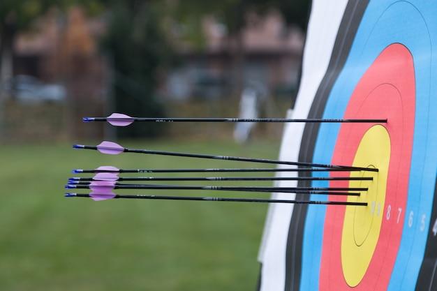 Крупный план мишени для стрельбы из лука со стрелами на ней.