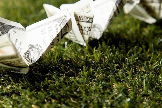 草の上の紙幣のクローズアップ