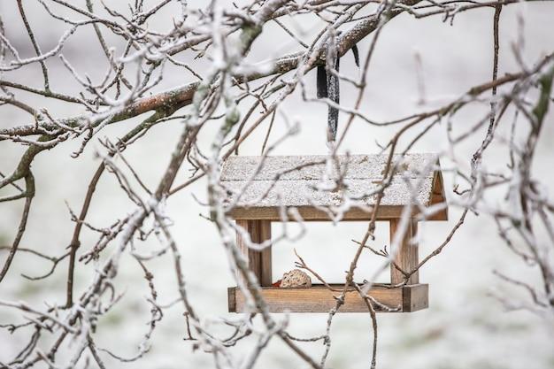 Крупным планом кормушка для птиц в ветвях деревьев с полным кормом для птиц в зимнее время