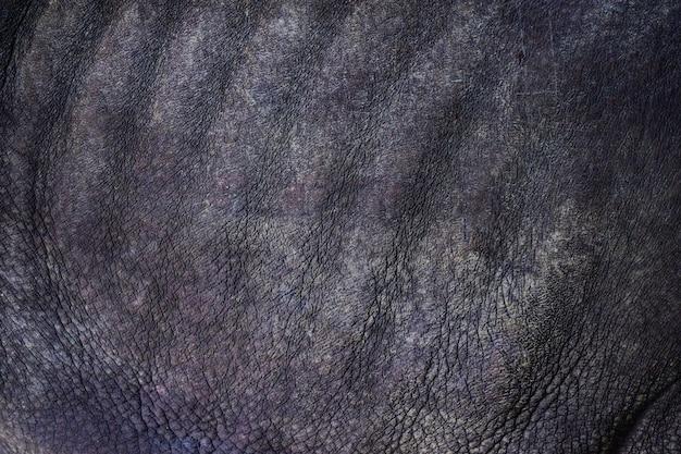 黒いrhinoceros(diceros bicornis)の肌の質感のクローズアップ。