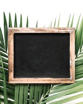Close-up of black slate over palm leaf