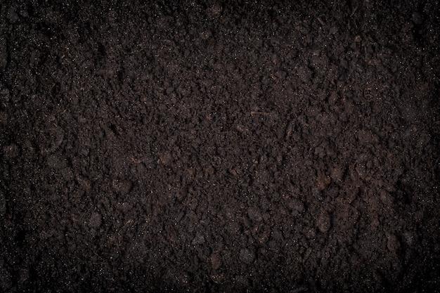 黒い土の背景のクローズアップ
