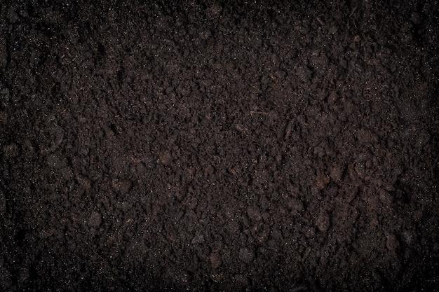 黒土パターンの概念のクローズアップ