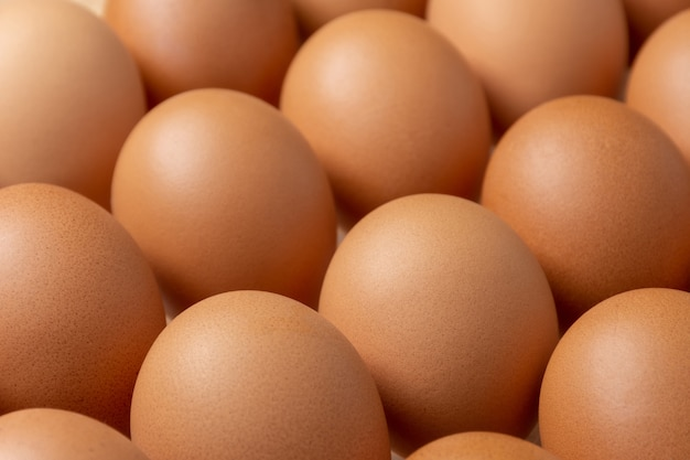 茶色の鶏卵のクローズアップ。