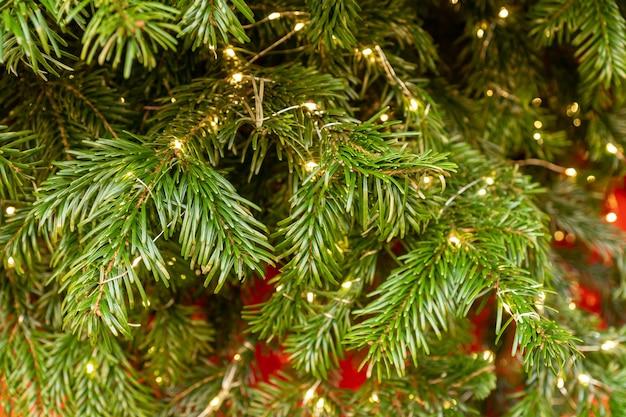 黄金色の新年の装飾で輝く花輪とクリスマスツリーのクローズアップ
