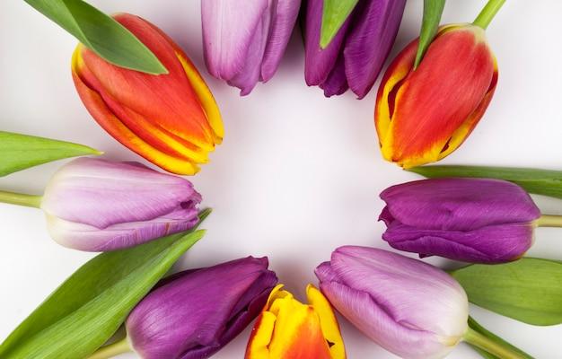 Крупный план красочных тюльпанов, расположенных в круглой форме