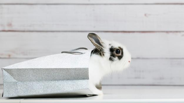 かわいい白いウサギのクローズアップは、銀の紙袋に座っています。ギフトとプレゼントのコンセプト、イースターとクリスマスの休日