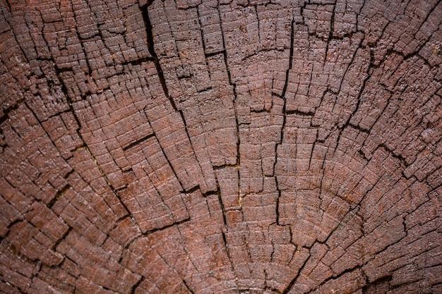 어두운 갈색 나무 배경의 클로즈업