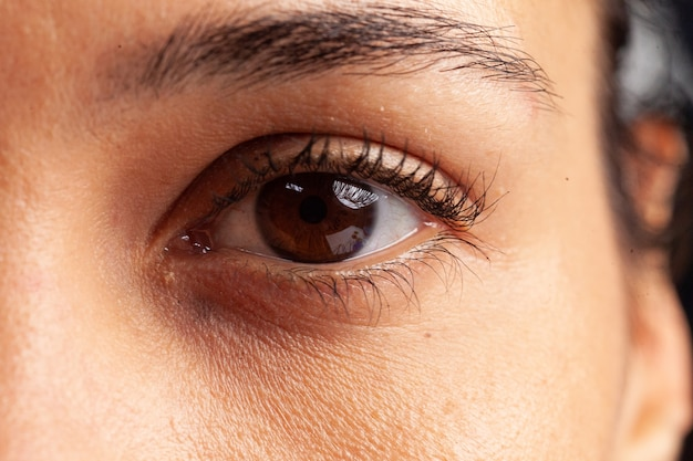 まつげと眉毛で女性の目のクローズアップ