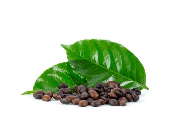 Крупный план свежих кофейных зерен