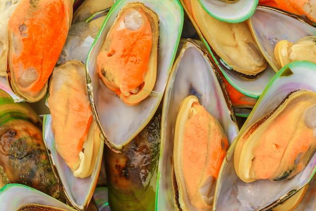 新鮮なムール貝のクローズアップ。