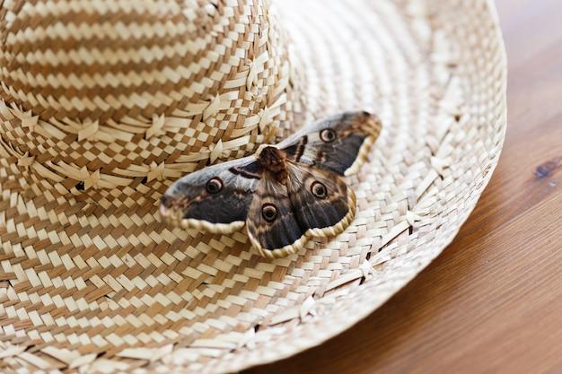 밀 짚 모자에 앉아 거 대 한 공작 나 방 saturnia pyri의 닫습니다.