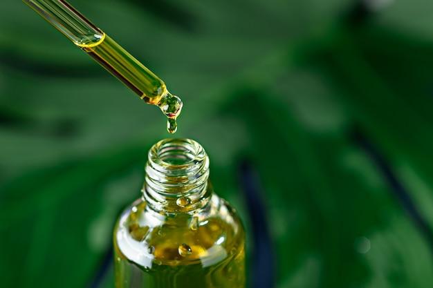 녹색 식물 배경에 피펫 및 화장품 노란색 기름 유리 병의 근접, 혈청 개념의 드롭