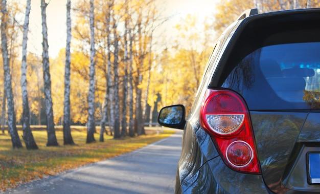 Закройте серый блестящий пустой автомобиль, припаркованный в осеннем парке