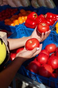 유기농 토마토를 들고 손을 클로즈업합니다
