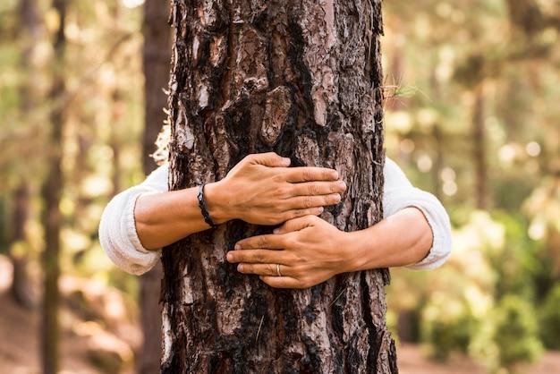 森の中で木の幹を抱き締める女性の手のクローズアップ。愛情と思いやりを持って木を抱きしめる女性。環境保全のために木を保護する女性の手。木を抱き締めて保護する手。