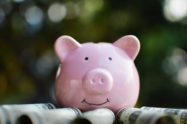 지폐와 함께 행복 한 핑크 돼지 저금통의 닫습니다.