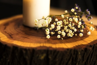 Close-up of herbal flowers near wax candle