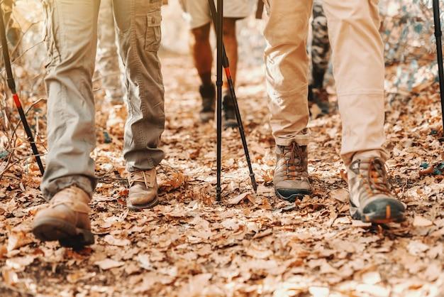 秋の森を歩くハイカーの足のクローズアップ。地面に葉します。