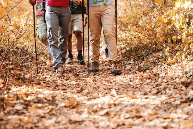 森の中を歩くハイカーの足のクローズアップ。秋の時間。